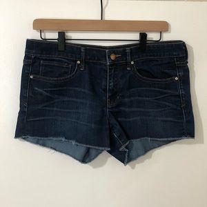 Summer Cut-Offs Shorts- Size 28